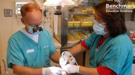 OET Gets Nod from Dental Council of Ireland